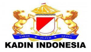 kadin-20-logo