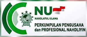 P2N Logo