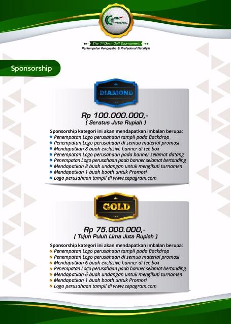 P2N sponsorship