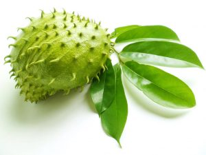 manfaat-daun-dan-buah-sirsak-untuk-kecantikan