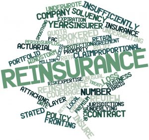 reinsurance-words